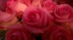 flower49